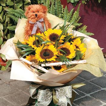 小熊向日葵之愛